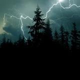 ilustrační obrázek k článku AUDIO: Lidé zemřeli kvůli větru