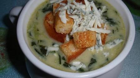 ilustrační obrázek k článku Špenátová polévka se sýrem a s krutony
