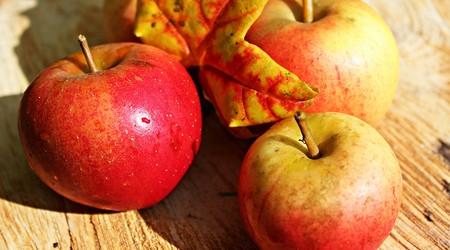 ilustrační obrázek k článku Plněná jablka vlašskými ořechy a piškoty